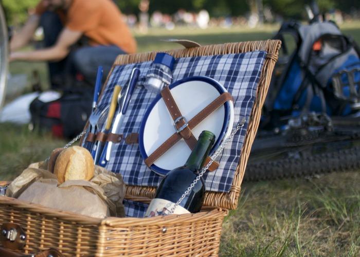 picnic-en-familia